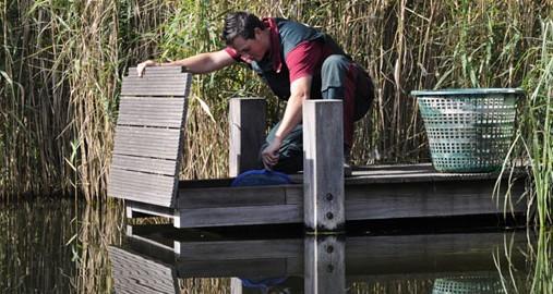 Teichpflege und Wartung vom Schwimmteich oder Naturpool