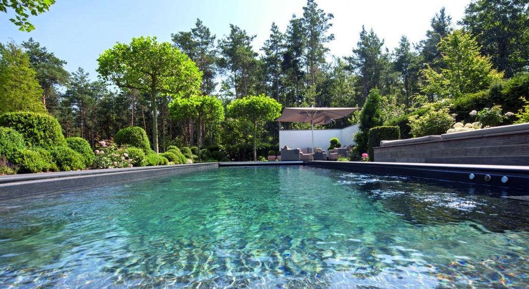 natur pools zinsser poolbau. Black Bedroom Furniture Sets. Home Design Ideas