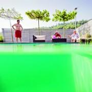 Schwimmteich mit klarem Wasser und biologischer Filterung